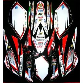 Kit adhesivos Racing Edition BETA 2009